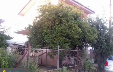 Μονοκατοικία 130 τ.μ., Αγριλιά, Ανδρούσα, € 90.000