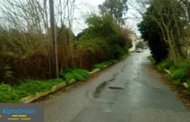 Οικόπεδο 3000 τ.μ., Χώρα, Νέστορας, € 300.000