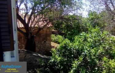 Μονοκατοικία 100 τ.μ., Μεσοχώρι, Πύλος, € 150.000