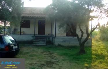 Μονοκατοικία 80 τ.μ., Πλατύ, Αρφαρά, € 80.000
