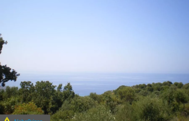 Οικόπεδο 7700 τ.μ., Προάστιο, Λεύκτρος, € 75000