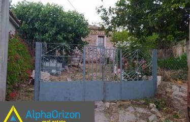 Μονοκατοικία 80 τ.μ., Αρσινόη, Ιθώμης, € 45.000