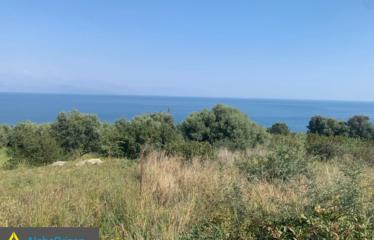 Αγροτεμάχιο 5000 τ.μ., Καλαμάκι, Πεταλίδι, € 75.000
