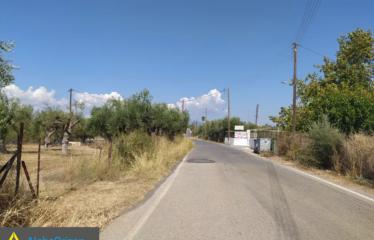 Οικόπεδο 3300 τ.μ., Μαυρομμάτι, Μεσσήνη, € 65.000