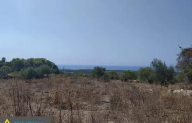 Οικόπεδο 70000 τ.μ., Τραγάνα, Γαργαλιάνοι, € 2.800.000