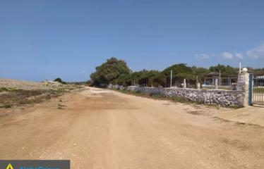 Οικόπεδο 10000 τ.μ., Μαραθόπολη, Γαργαλιάνοι, € 1.000.000