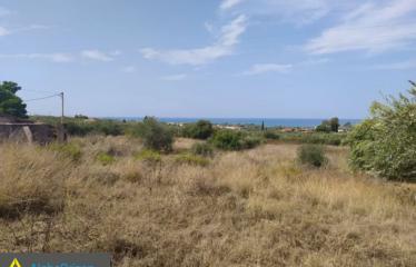 Οικόπεδο 7000 τ.μ., Μεμί, Κυπαρισσία, € 140.000