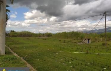 Αγροτεμάχιο 5000 τ.μ., Κέντρο, Μεσσήνη, € 200.000