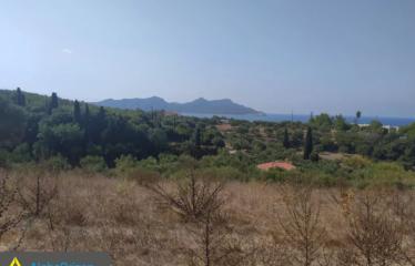 Αγροτεμάχιο 8200 τ.μ., Μεθώνη, Μεσσηνία, € 200.000