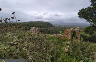 Οικόπεδο 4000 τ.μ., Πετροχώρι, Νέστορας, € 500.000