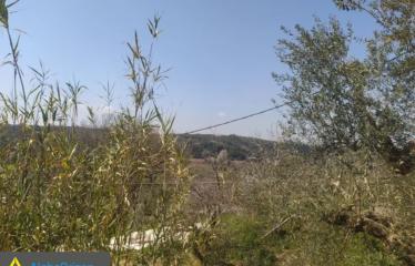 Οικόπεδο 600 τ.μ., Μάδενα, Μεσσήνη, € 25.000