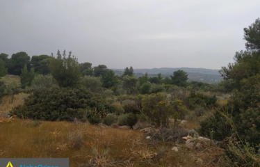 Αγροτεμάχιο 8500 τ.μ., Πετροθάλασσα, Κρανίδι, € 250.000