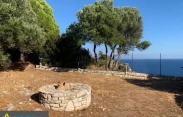 Οικόπεδο 4000 τ.μ., Βασιλίτσι, Κορώνη, € 450.000